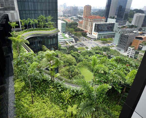 Il giardino pensile pi grande di singapore completata la - Giardino pensile ...