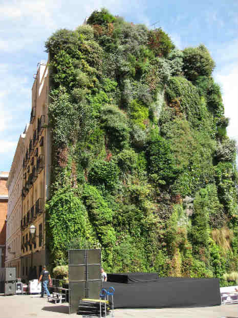 Giardini pensili citt pi vivibili con i vertical garden for Giardini pensili