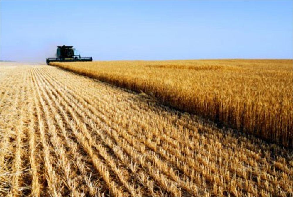 Eco-energie in agricoltura, accessibili ancora a pochi