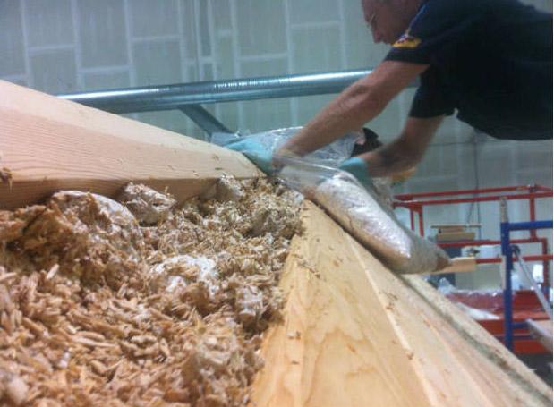 Materiali edili ecosostenibili: isolante ottenuto dal micelio dei funghi
