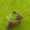 Con GR3 l'erba da sfalcio diventa biogas