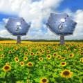 Il fotovoltaico del futuro assomiglia a un girasole-