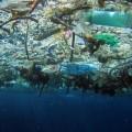 isole di spazzatura