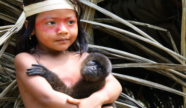 Ecuador sì alla deforestazione no alla cooperazione ambientale-