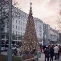 Hello Wood realizza l'albero di Natale da riciclare dopo le feste