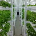 """La """"fattoria in scatola"""" nel container intelligente"""