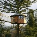 La casa sull'albero da raccontare in un libro