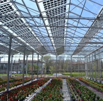 Torino smart city tra tecnologia e sicurezza