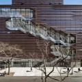 L'ateneo sostenibile nel centro di New York: avanguardia e sostenibilità