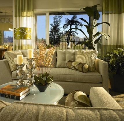 10 piante per depurare la casa dagli inquinanti