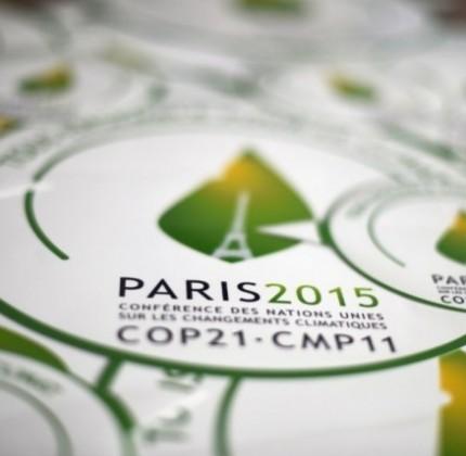 700_dettaglio2_Onu-summit-clilma-Parigi-COP21