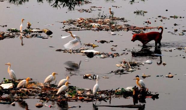 Acqua morta i 10 fiumi più inquinati del mondo