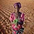 Al cambiamento climatico si risponde con l'agroecologia 3