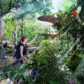 Singapore, un parco di 24 chilometri che cuce la nazione