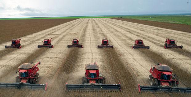 L'agricoltura industriale è la vera causa dell'inquinamento 2
