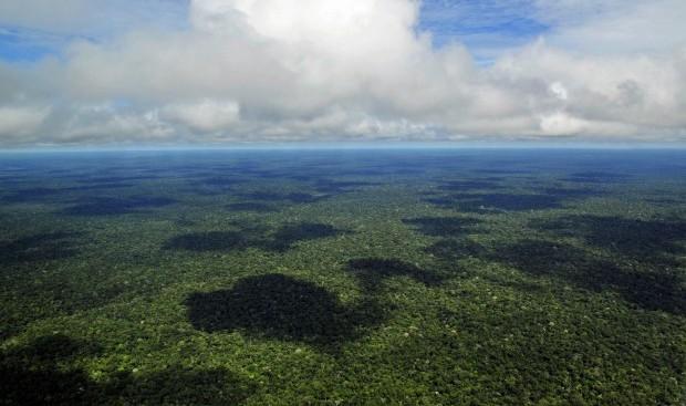 L'Amazzonia non è più il polmone verde della Terra