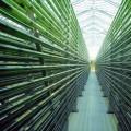 Energia dalle alghe: ad AquaFarm i migliori progetti in mostra