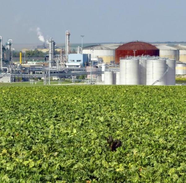 Elementi 40, tra smart farm e chimica verde