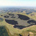 impianto fotovoltaico a forma di panda (2)