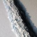 maxi iceberg