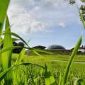 Biogas: il primo impianto bi-stadio in Europa è italiano