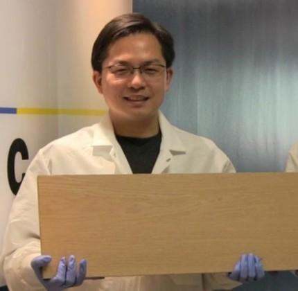 Dall'Università del Maryland il super legno forte come l'acciaio
