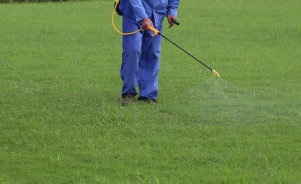 Città Libere dai Pesticidi