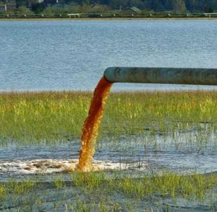 Pesticidi nelle acque