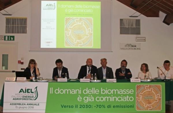 biomasse aiel stufe