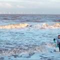 bioetanolo con acqua marina
