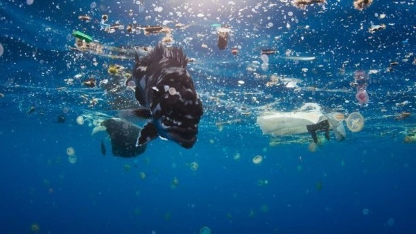 new-plastics-economy