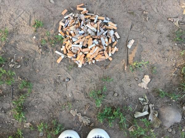 rifiuti-nei-parchi-urbani-park-litter-2018