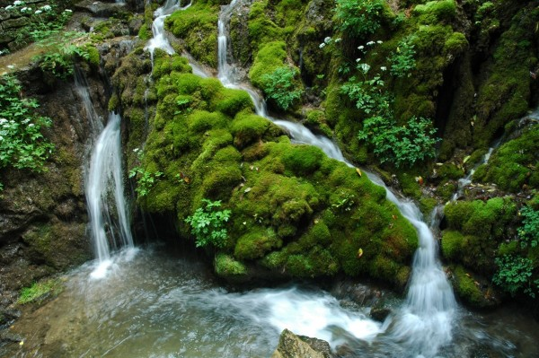 tutela-delle-acque-wwf-protectwater