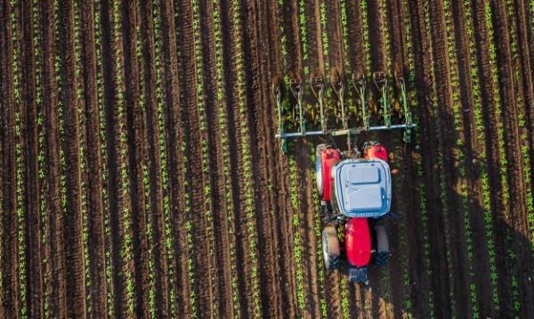 microplastiche in agricoltura