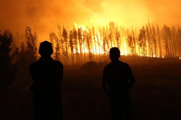 climate change cambiamento climatico
