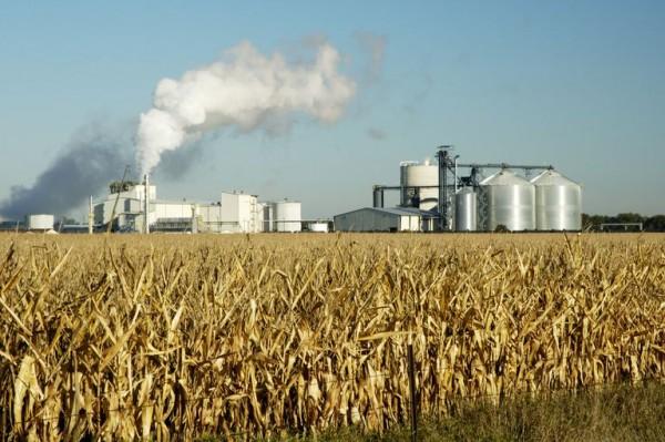 etanolo biodiesel