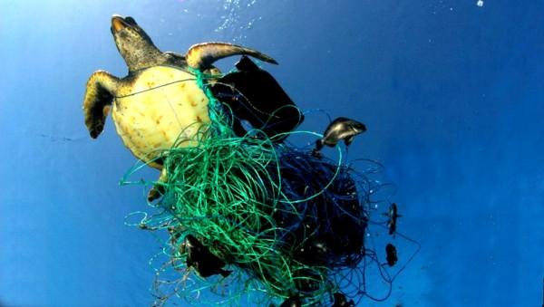 inquinamento-da-plastica-ocean-plastic-innovation-challenge