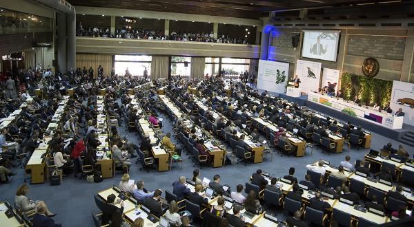 assemblea-ambientale-onu-nairobi-2019