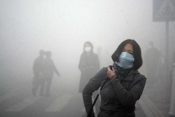 inquinamento atmosferico david boyd