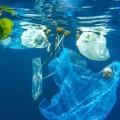 ddl salva mare plastica