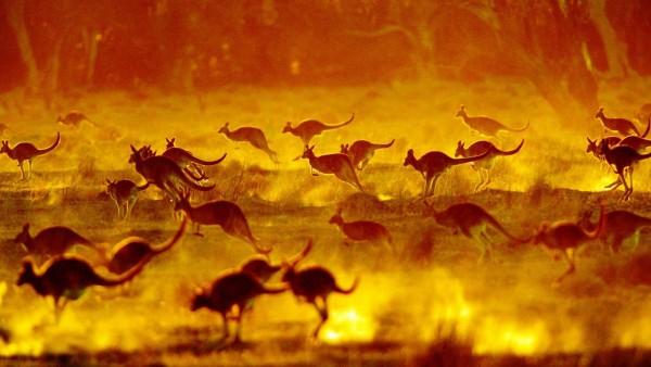 australia emissioni gas serra
