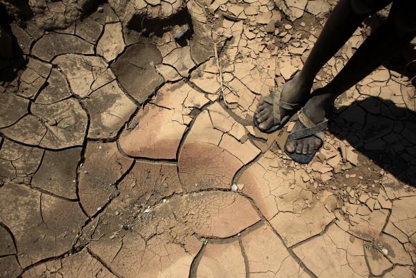 apartheid climatico
