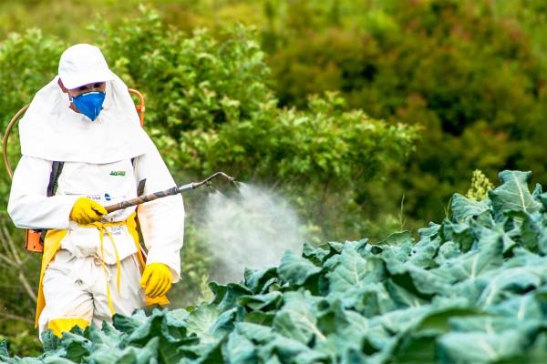 pesticidi ue usa brasile
