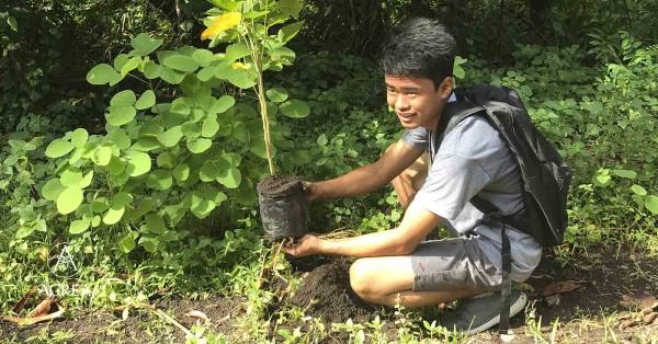 piantare albero Filippine studenti