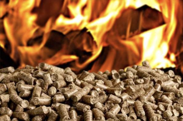 certificati bianchi biomasse