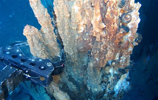 fondali oceanici