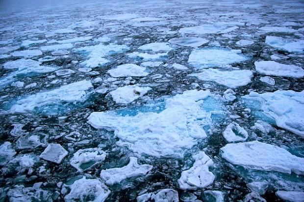 microplastiche ghiacci artici