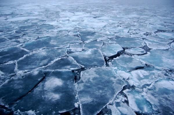 ghiacci mare artico