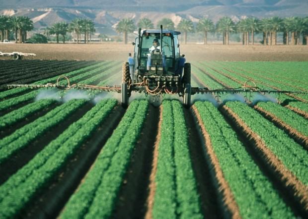 settore agricolo sussidi