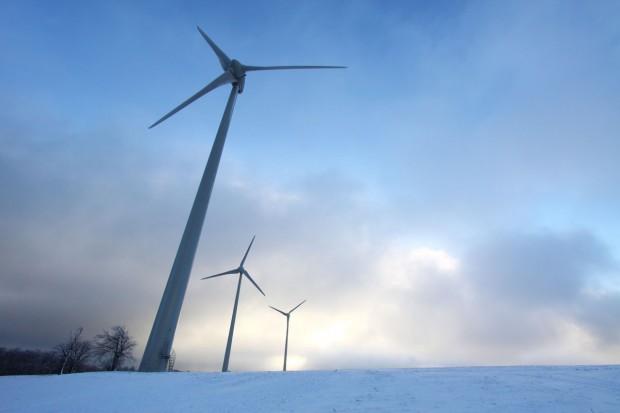 capacità eolica